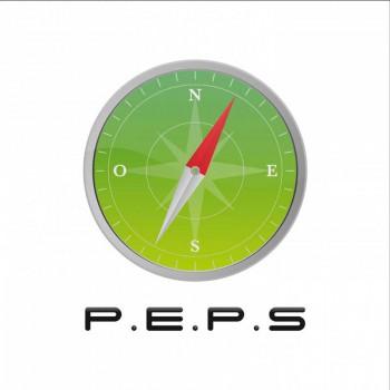 Création de Logo P.E.P.S - Orientation et Reconversion Professionnelle