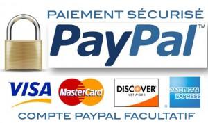 Bouton Paiement par paypal secure