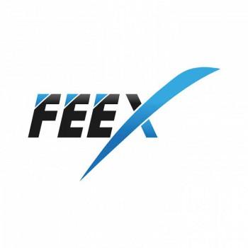 Création de Logo Feex