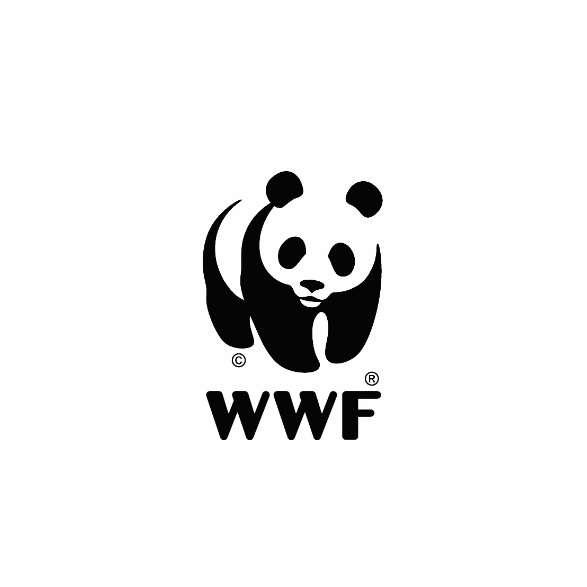 transformation logo wwf cagne not just a panda