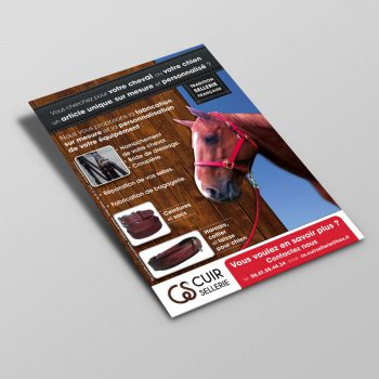 Creation Flyer CS Cuir Sellerie - Equipements chevaux chiens